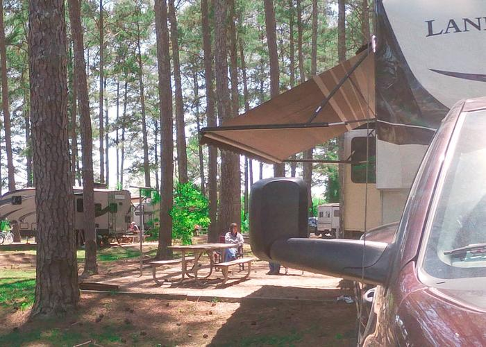 Campsite view, awning-side clearance.Sweetwater Campground, campsite 64.