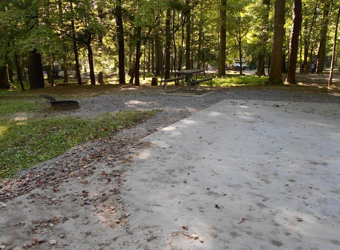 Cades Cove Campground B30