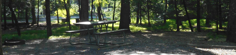 Cades Cove Campground B34