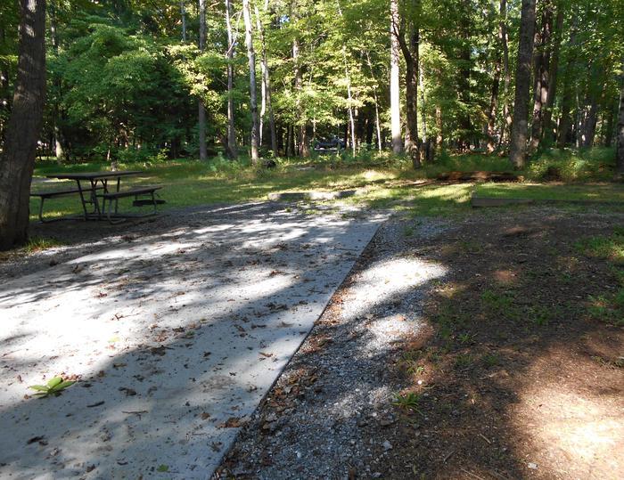 Cades Cove Campground B35