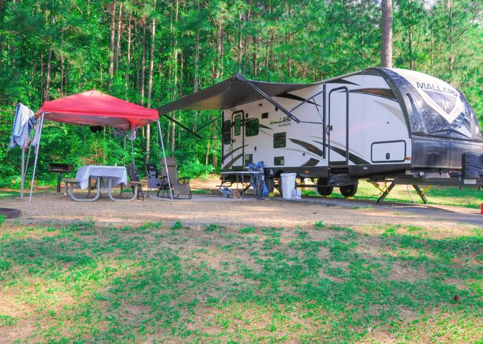 Campsite view, awning-side clearance.Sweetwater Campground, campsite 81.