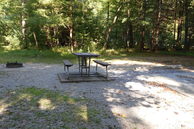 Cades Cove Campground B39