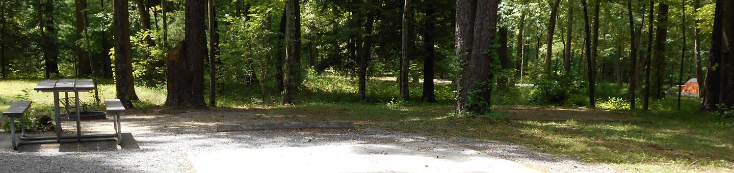 Cades Cove Campground B47