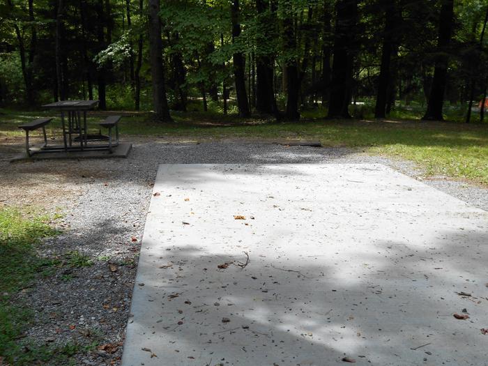 Cades Cove Campground B48