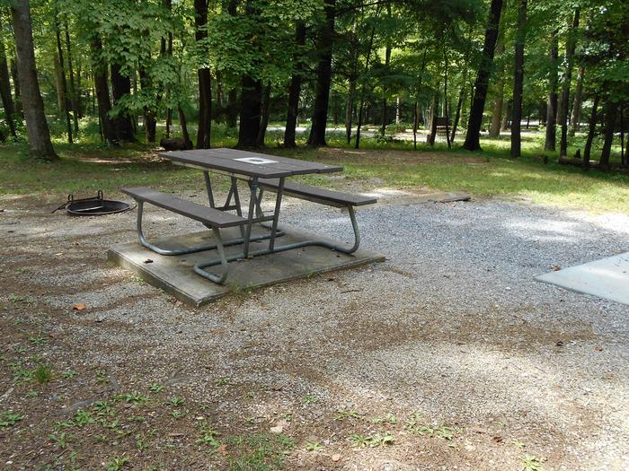 Cades Cove Campground B49