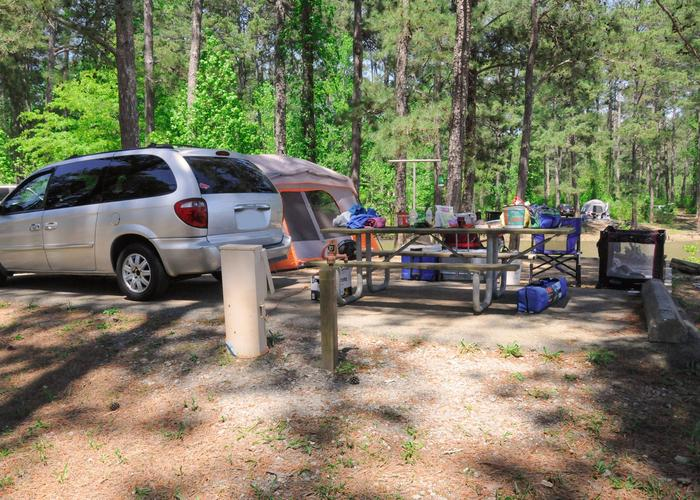 Campsite view, utilities-side clearance.Sweetwater Campground, campsite 89.