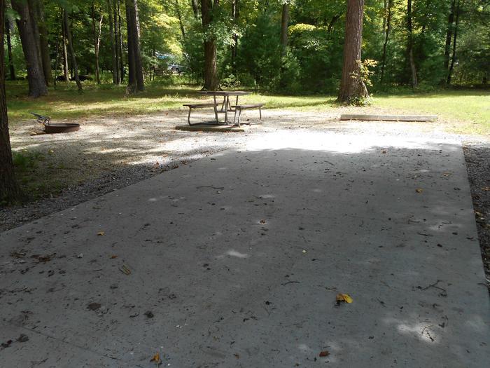 Cades Cove Campground B50