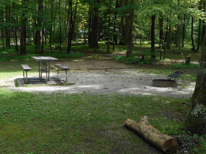 Cades Cove Campground B52