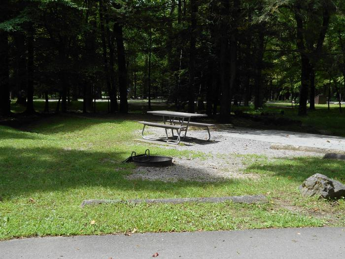 Cades Cove Campground B53