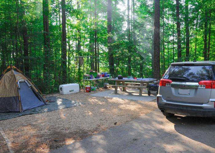 SW130 - Campsite view.Sweetwater Campground, campsite 130.