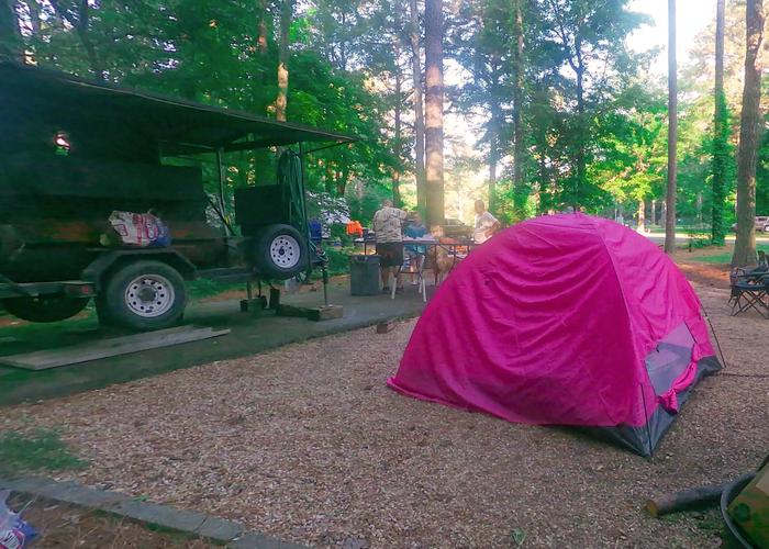 SW146 - Campsite view, awning-side clearance.Sweetwater Campground, campsite 146.