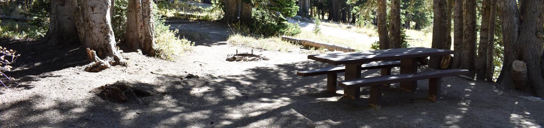 Albion Basin - Little Cottonwood CanyonSite 22