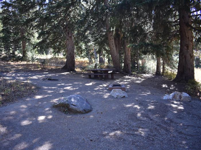 Albion Basin - Little Cottonwood CanyonSite 24