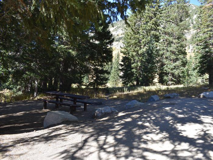 Albion Basin - Little Cottonwood CanyonSite 25