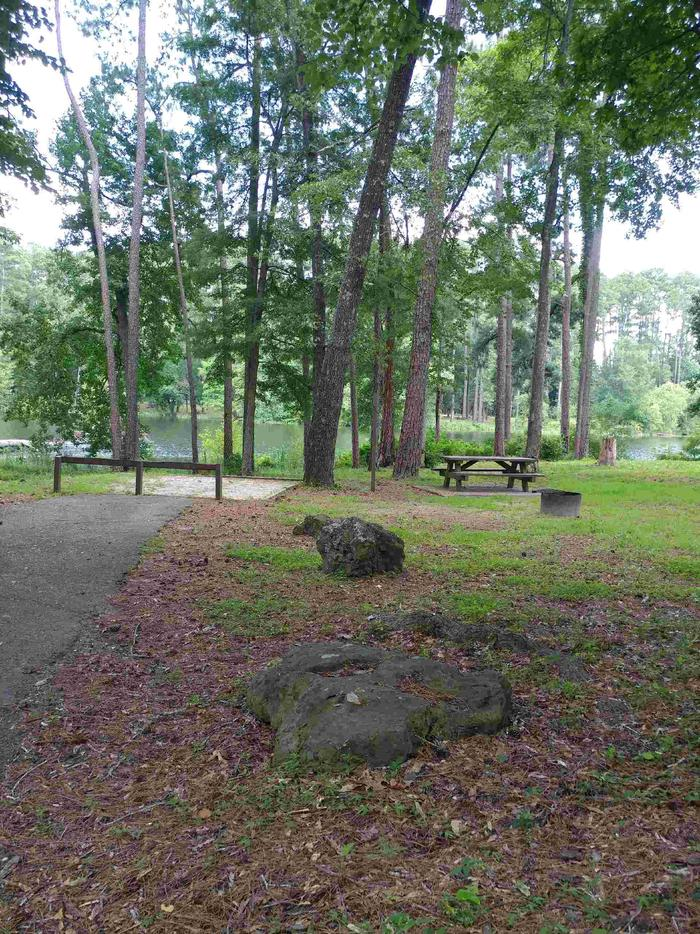 Group Site A, left side of campsite.