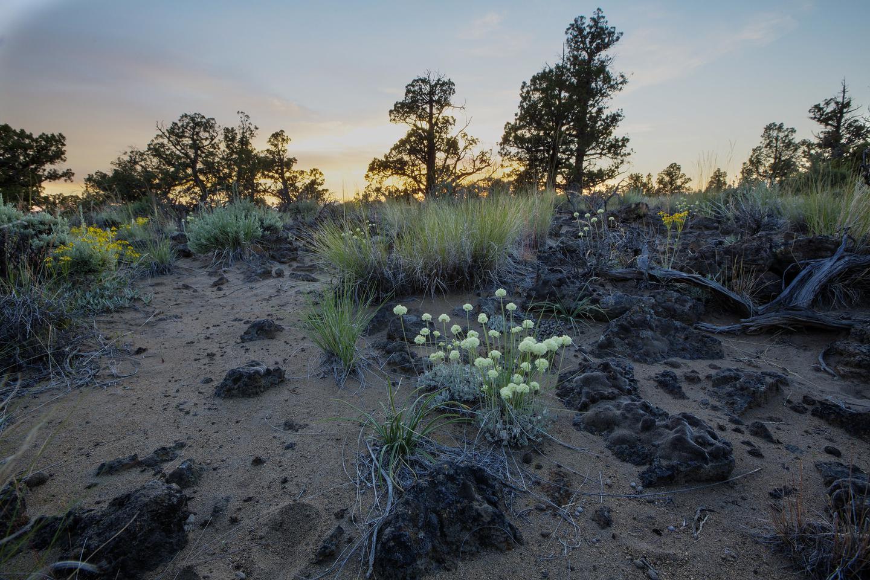 Spring sunset in the Oregon Badlands Wilderness