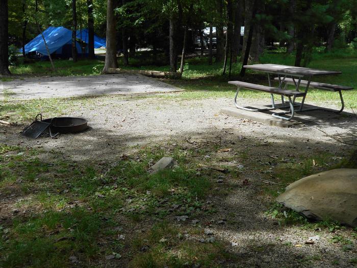 Cades Cove Campground B71B71