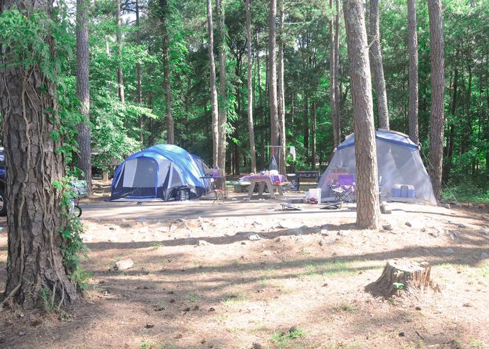 Campsite view.Sweetwater Campground, campsite 115.