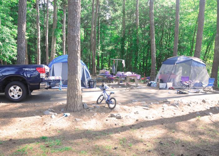 Driveway, campsite view.Sweetwater Campground, campsite 115.