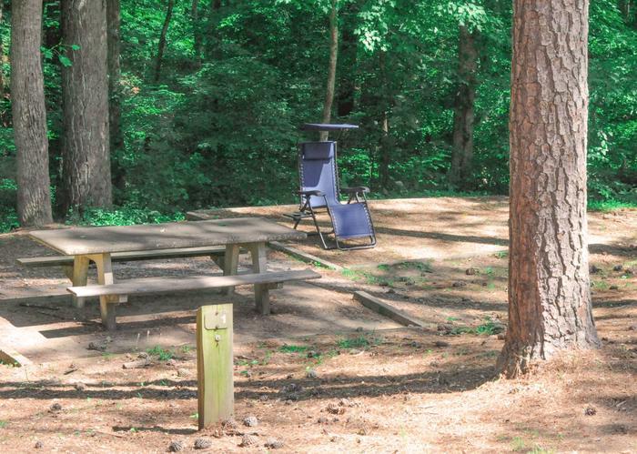 Campsite viewMcKaskey Creek Campground, campsite 1.