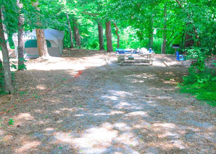 Campsite view.McKaskey Creek Campground, campsite 2.