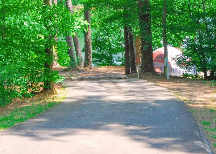 Driveway slope, utilities-side clearance.McKaskey Creek Campground, campsite 3