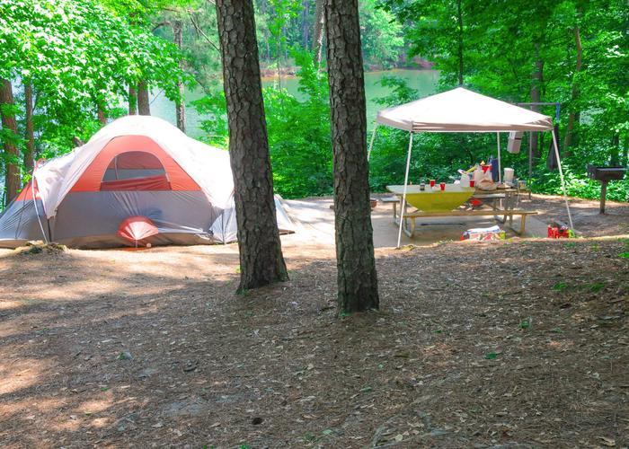 Campsite viewMcKaskey Creek Campground, campsite 3.