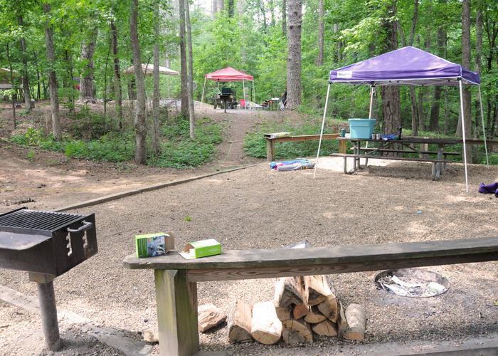 Campsite view.McKaskey Creek Campground, campsite 12.