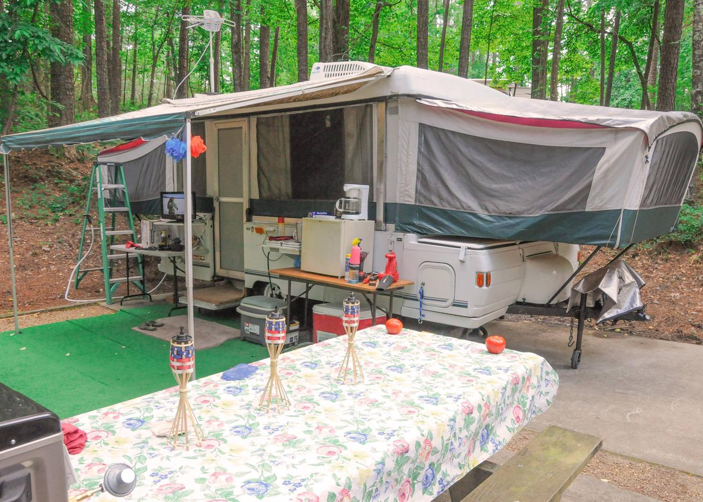 Awning-side clearance.McKaskey Creek Campground, campsite 24.