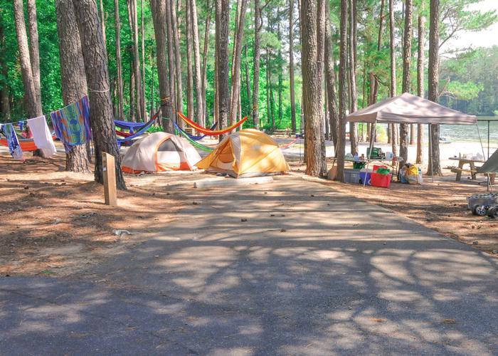 Driveway, campsite view.McKaskey Creek Campground, campsite 33.