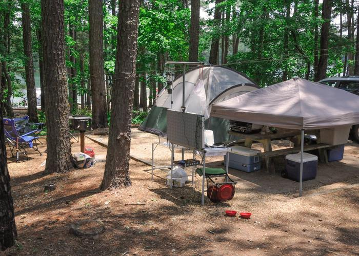 Campsite view.McKaskey Creek Campground, campsite 34.