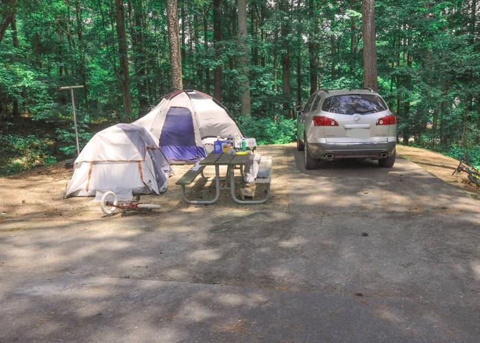 Driveway, campsite view.McKaskey Creek Campground, campsite 35.
