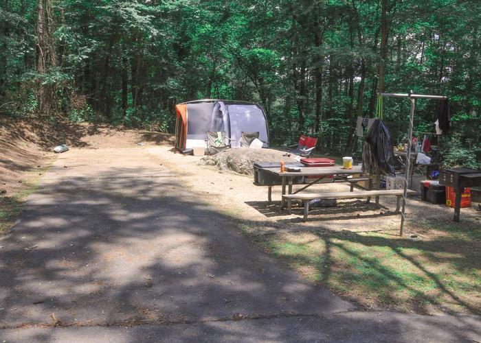 Driveway, campsite view.McKaskey Creek Campground, campsite 36.