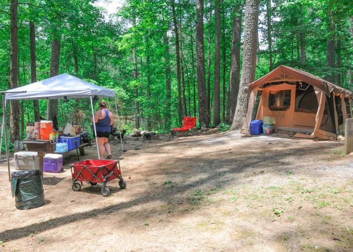 Campsite view-2.McKaskey Creek Campground, campsite 43.