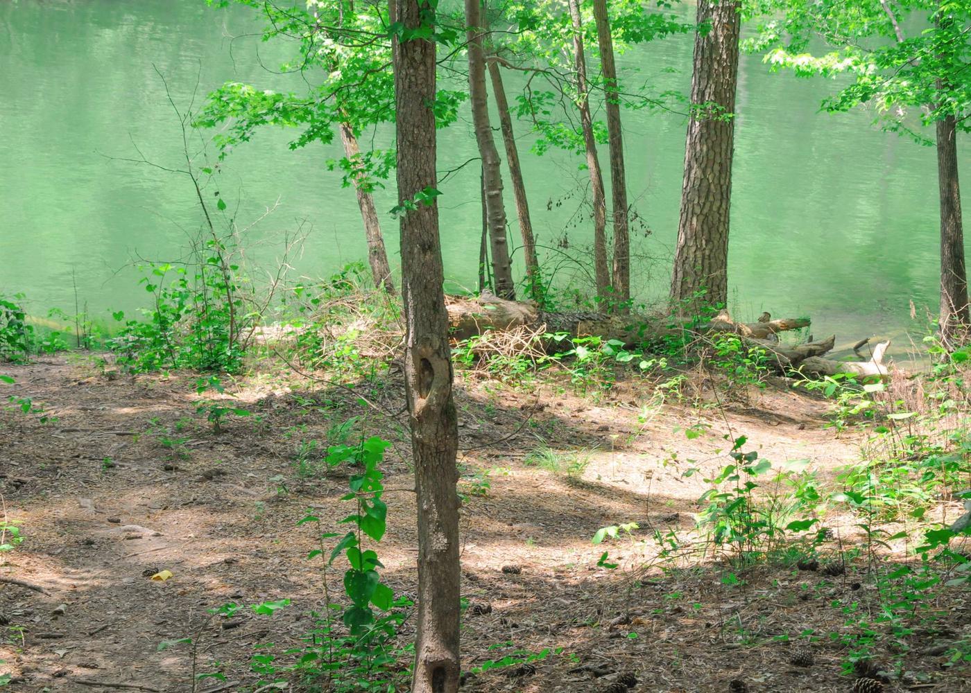 Water access.McKaskey Creek Campground, campsite 44.