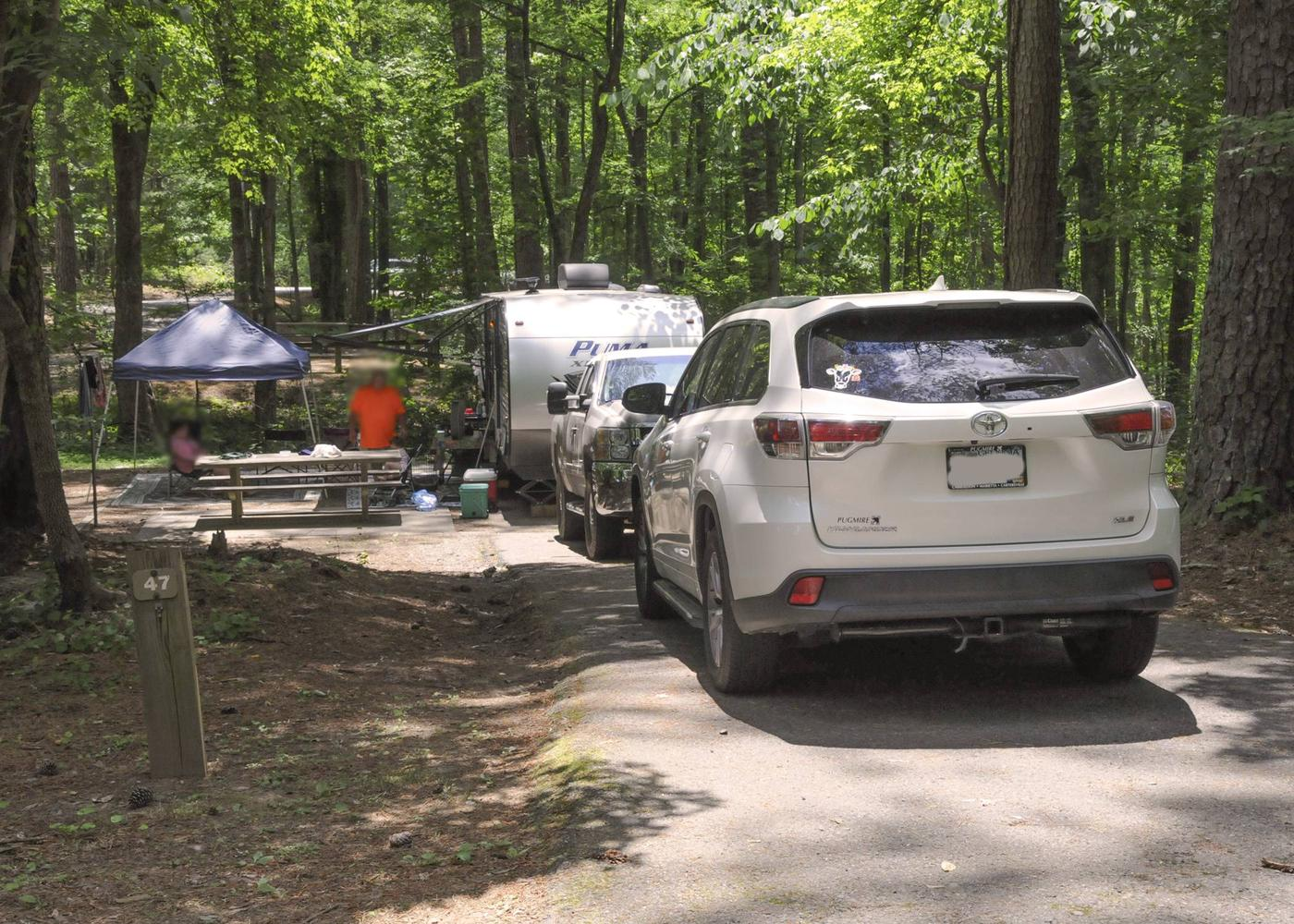 Driveway slope, awning-side clearance.McKaskey Creek Campground, campsite 47