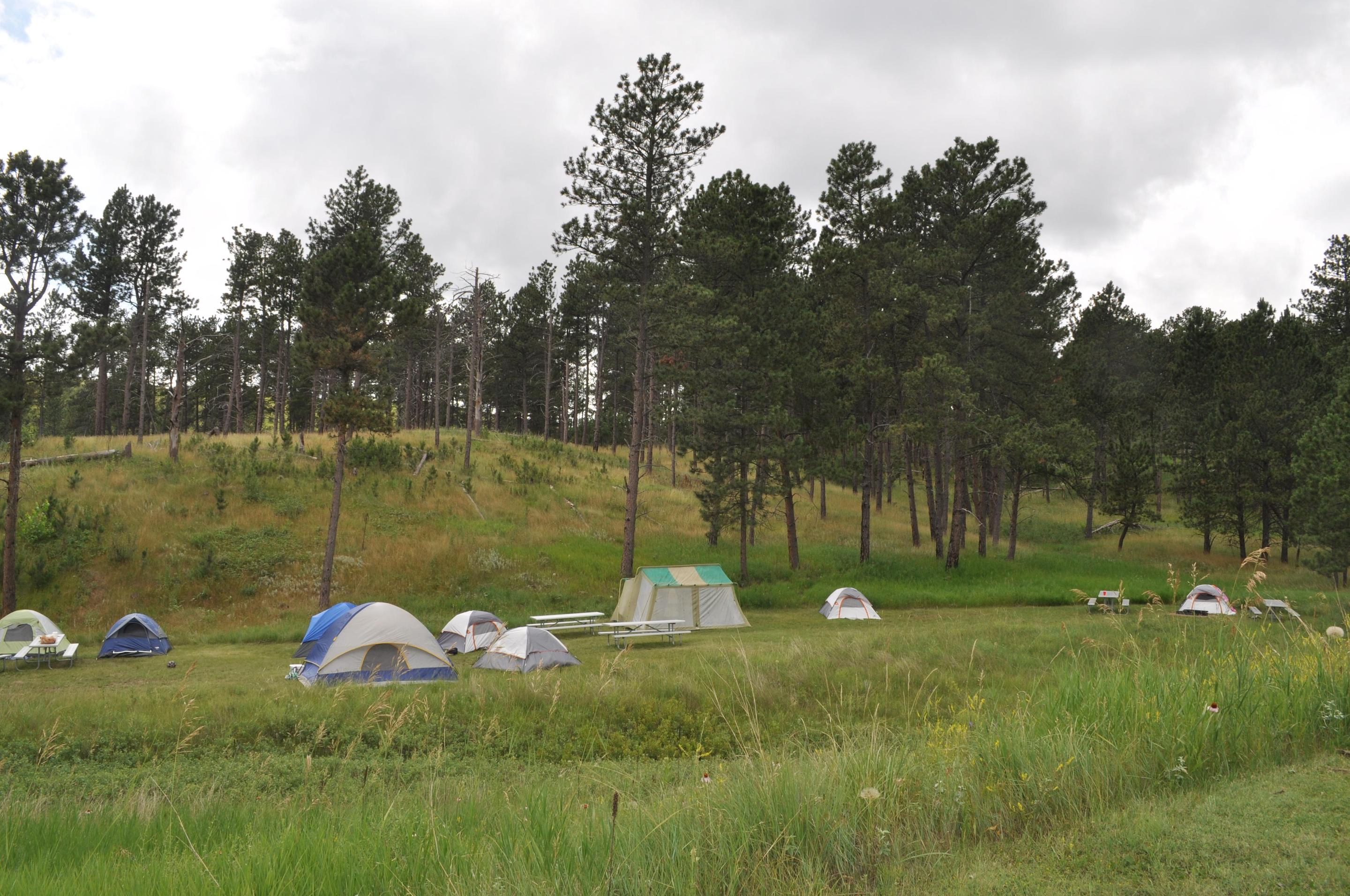 Elk Mountain Campground Group CampsiteThere are two group campsites available to reserve at Elk Mountain Campground.