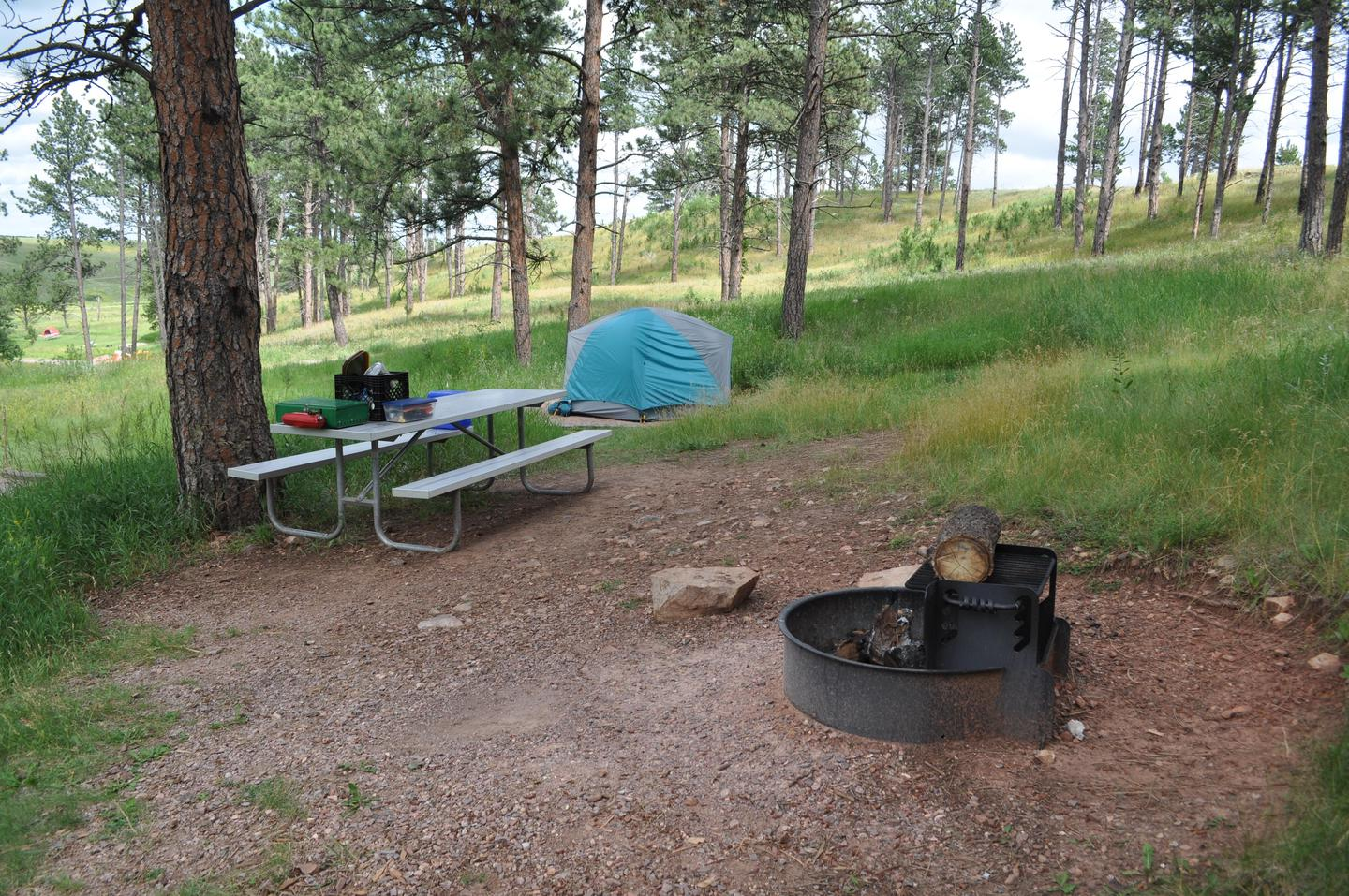 Elk Mountain CampsiteEach campsite comes with a picnic bench and a fire ring.