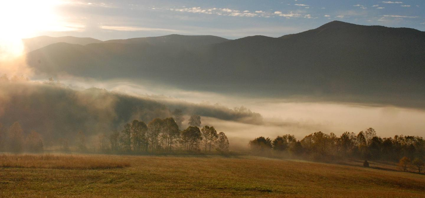 Mist Settles Into The ValleyCades Cove