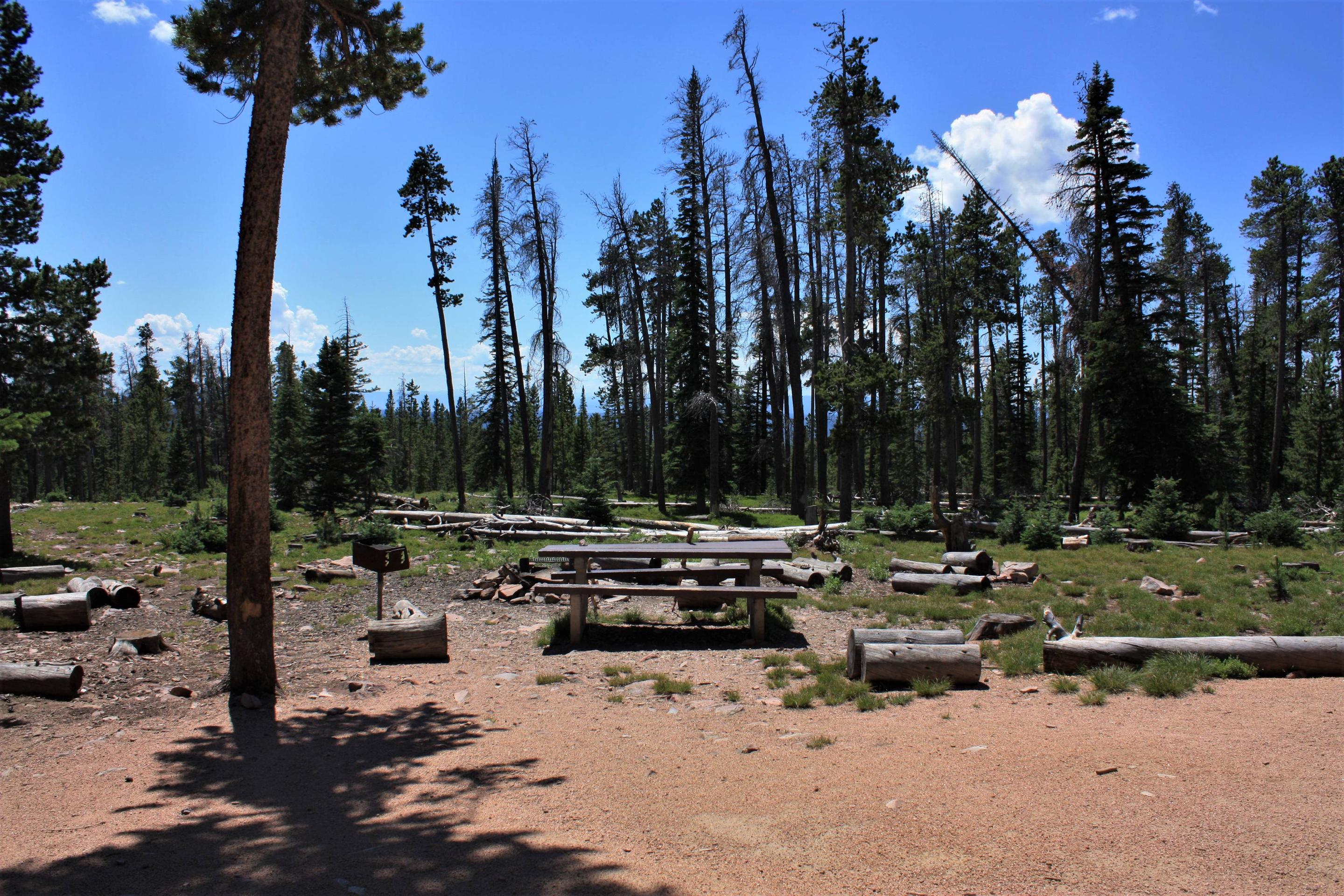Spruce Mountain Fire Lookout Tower picnic area and fire pit