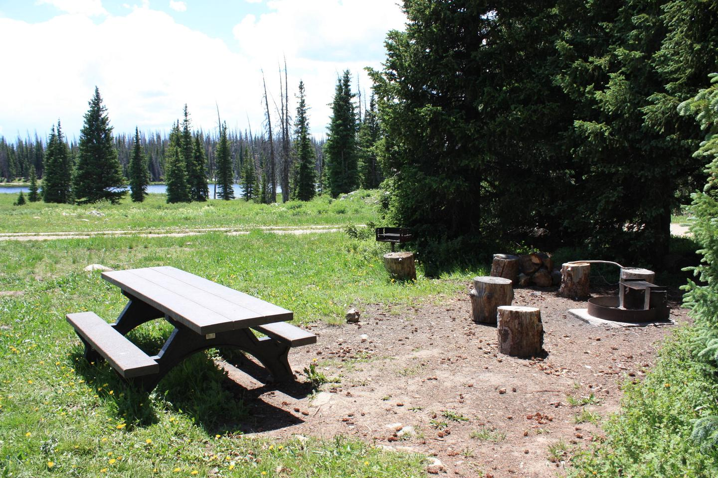 Little Brooklyn Lake Guard picnic area and fire pit