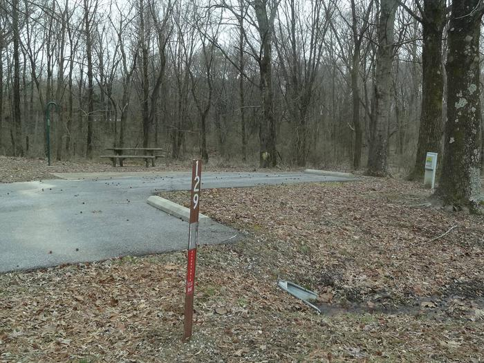 picnic table and fire pit located to the left of camp pad, electric and extra parking located to the right of pad. site located near water