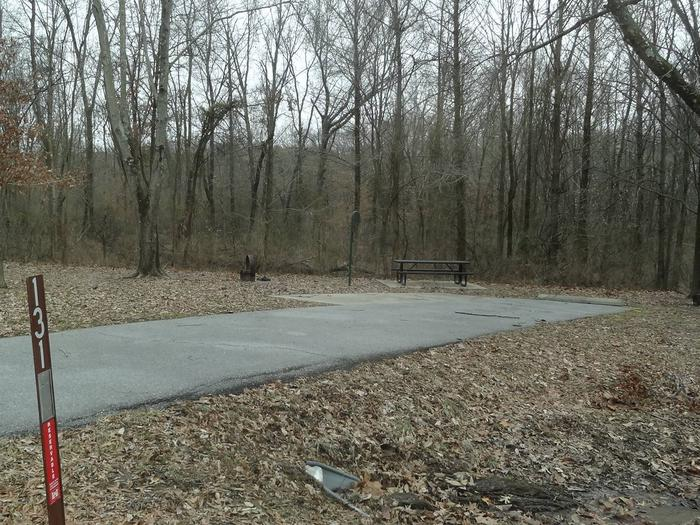 picnic table and fire pit located to the left of camp pad, electric to the right of pad.