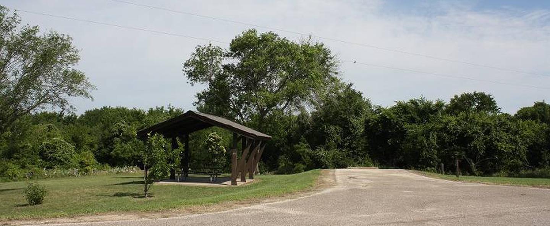 Taylor Park Site #41