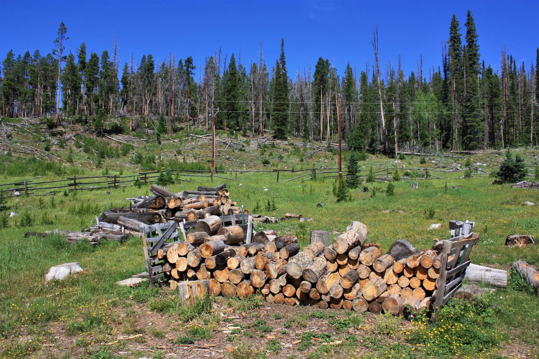 Keystone Ranger Station woodpile