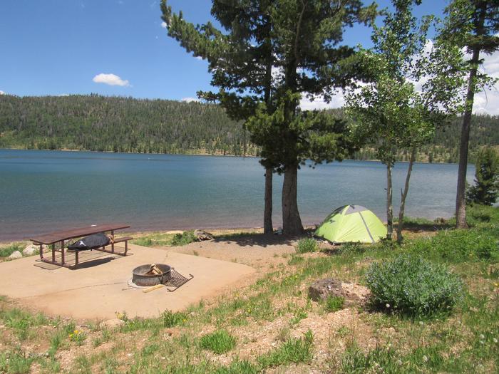 Camping at Spruces CampgroundNavajo Lake View