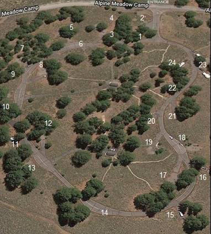 Alpine Meadow Campground Satellite ViewAlpine Meadow Campground satellite view with site number overlay.