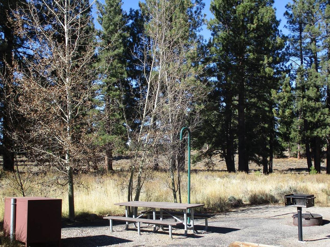 Campsite FeaturesEach campsite features a bear box, picnic table, fire ring, grill, and lantern hook.