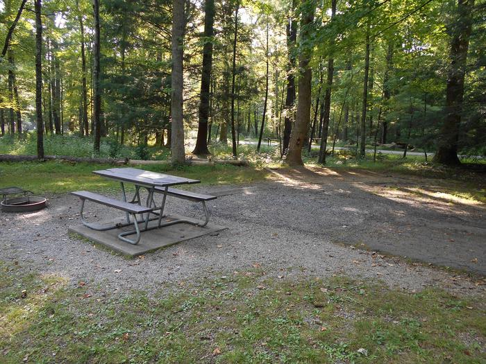 Cades Cove Campground B19B19