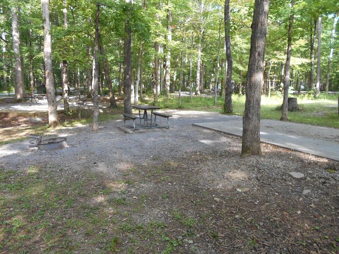 Cades Cove Campground C46C46